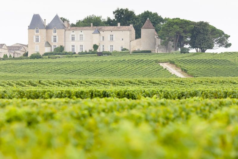 Chateau d'Yquem - Justin Wine